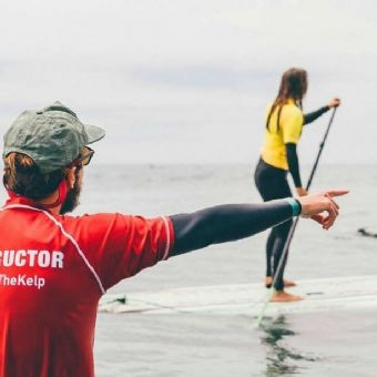 La Jolla: 1.5-Hour Stand Up Paddle Board Lesson
