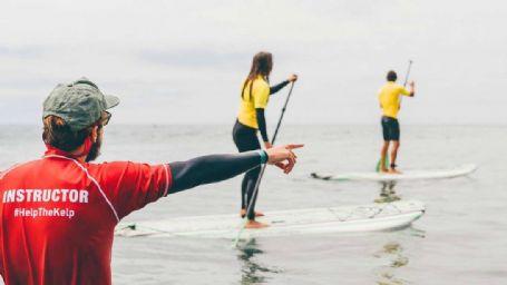 La Jolla Paddle Board Lesson 1.5-Hr