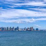 Harbor Cruise & Sea Lion Adventure