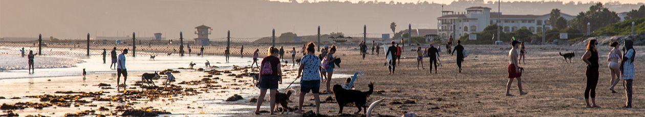 North Beach (Dog Run Beach)